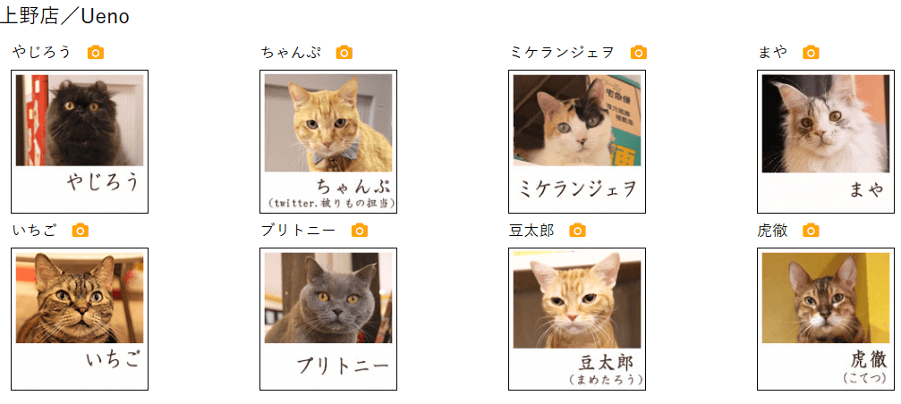 猫まるカフェ
