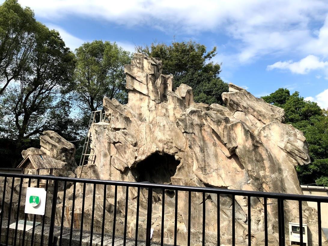 上野動物園-サル山