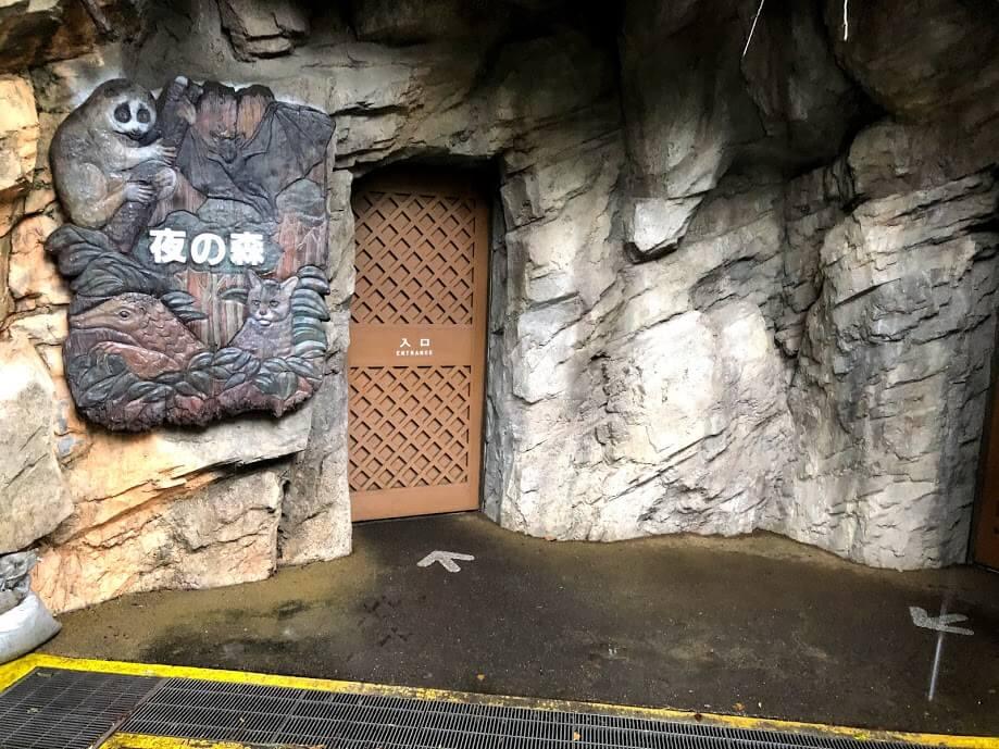 上野動物園-夜の森