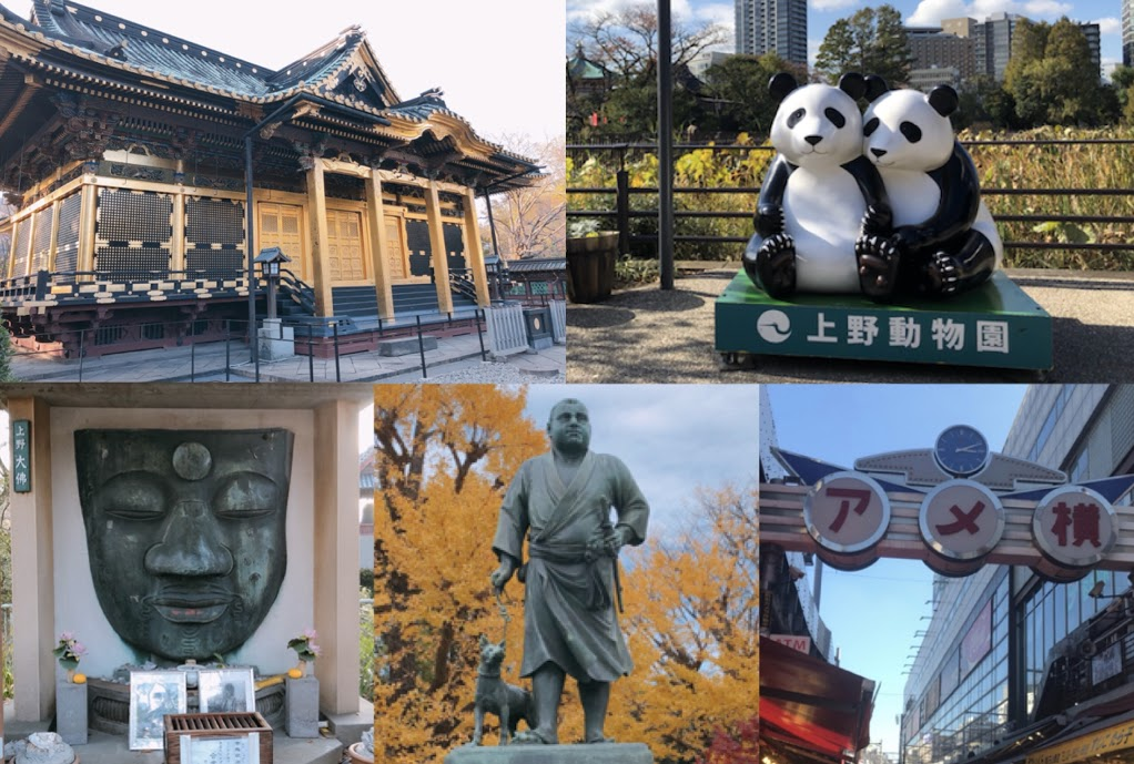 上野-おすすめ観光スポット