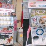 昆虫食-上野